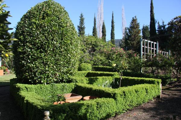 Fotografie hotelů: Foxglove Gardens, Tilba Tilba