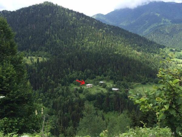 Φωτογραφίες: House in the Mountain, Tselat'i