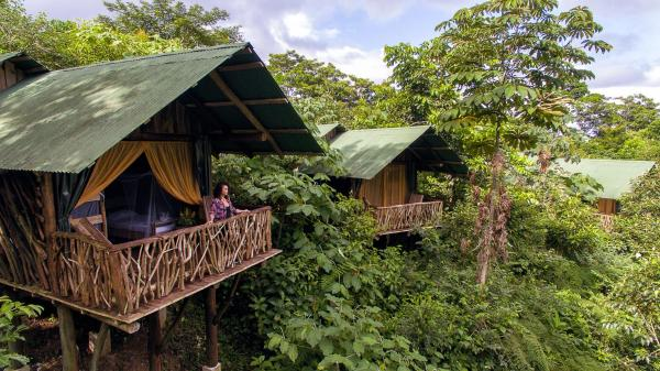 Hotel Pictures: La Tigra Rainforest Lodge, San Gerardo