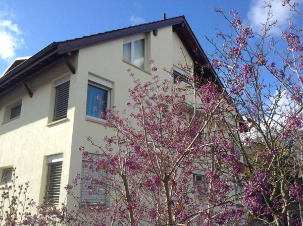 Hotel Pictures: Lovely Basel Apartment, Allschwil