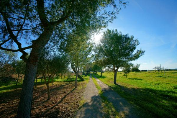 Hotel Pictures: Bou Ros Finca Can Nadal, Felanitx