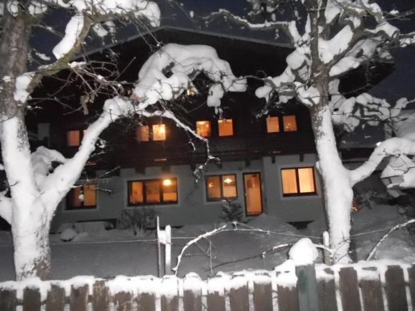 Foto Hotel: Ferienwohnung Fred, Hollersbach im Pinzgau