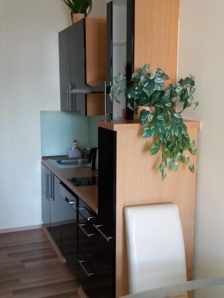 Hotel Pictures: Apartmán McVitek, Sušice