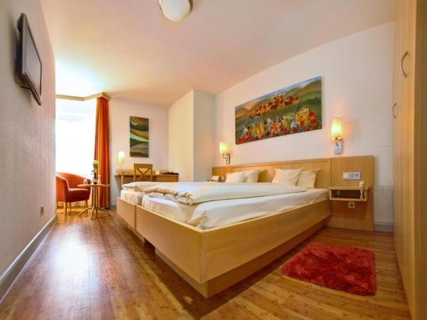 Hotel Pictures: Hotel zum Ochsen, Ehingen