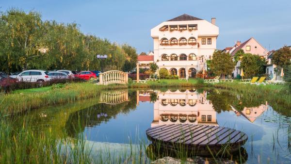 Hotel Pictures: Das-Schmidt Privathotel, Mörbisch am See