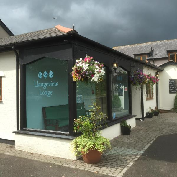 Hotel Pictures: Llangeview Lodge, Usk