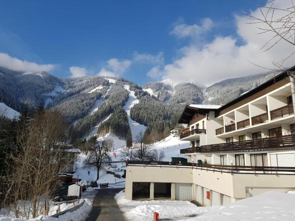 Hotel Pictures: Apartment HOLIDAY - Ski-in/Ski-out, Schmitten