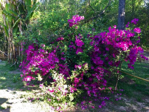 Foto Hotel: Aracataca - la casita del tigre, Dique Luján