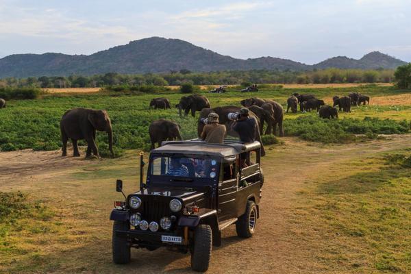 ホテル写真: The Polonnaruwa Rest, ポロンナルワ