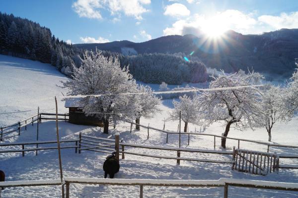 Fotos do Hotel: Urlaub am Bauernhof Grub, Göstling an der Ybbs