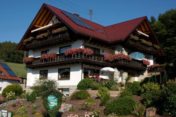 Hotel Pictures: Gästehaus Cornelia, Wildensee