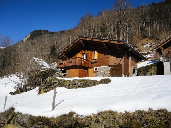 Hotel Pictures: Chalet Julian, Lütschental