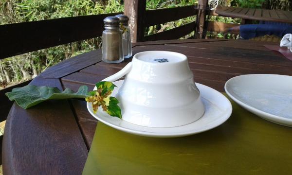 Hotel Pictures: Rinconcito Verde, Ujarrás