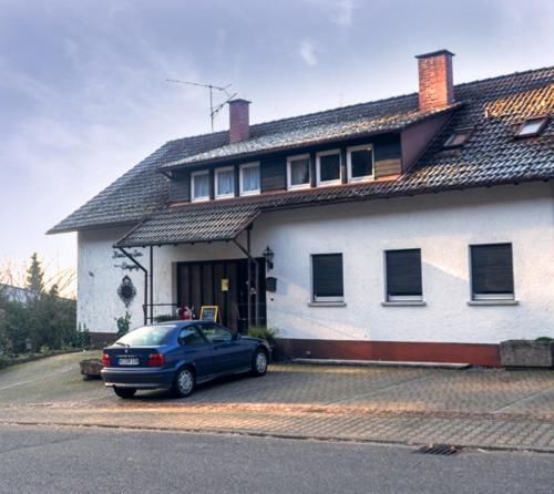 Hotel Pictures: Haus am See, Sinzheim