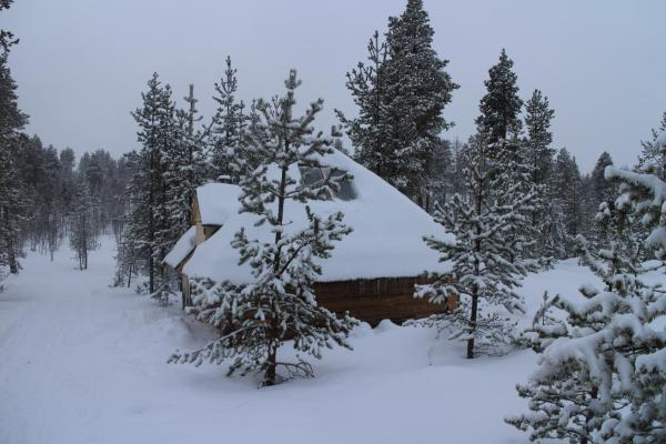 Hotel Pictures: Husky Hut, Ivalo