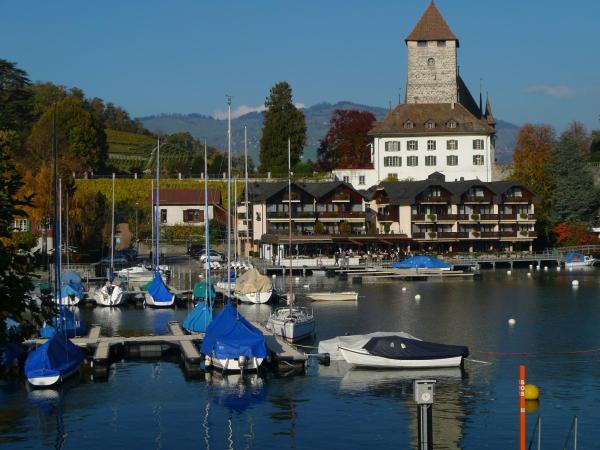 Hotel Pictures: Hotel-Restaurant Seegarten-Marina, Spiez