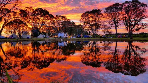Φωτογραφίες: Coonawarra Bush Holiday Park, Coonawarra