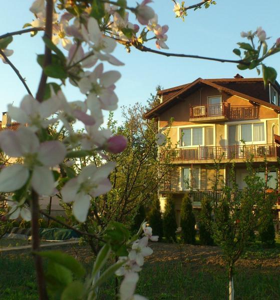 Hotellikuvia: Villa Reveri, Tsŭrkva