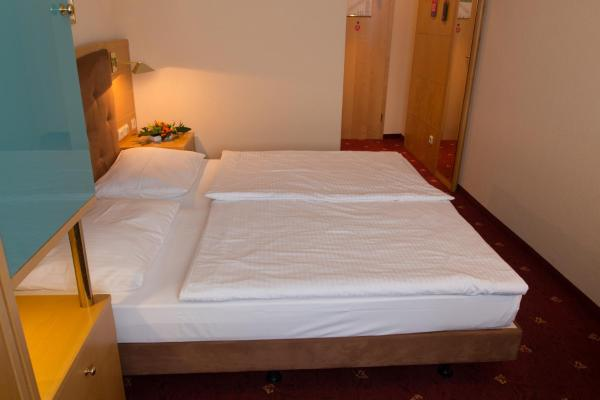 Hotel Pictures: Ringberg Hotel, Suhl