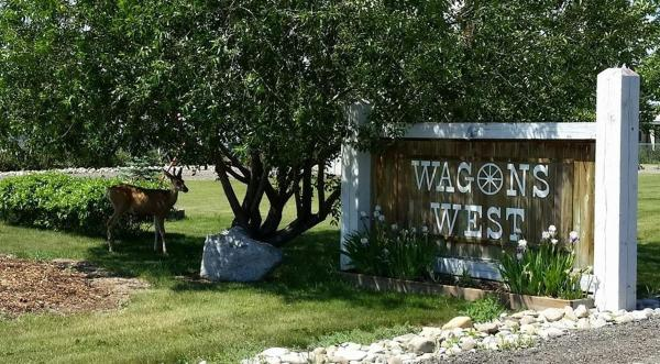 Hotel Pictures: Wagons West RV Park and Storage, Sundre