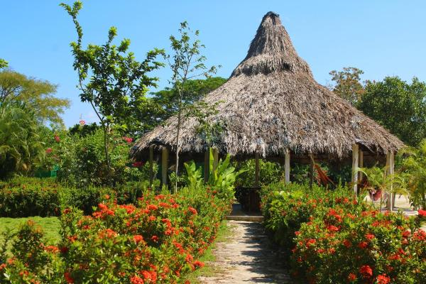 Hotel Pictures: Guadalupe Beach, Palomino