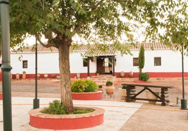 Hotel Pictures: Casa Rural Cerromolino, Villanueva de San Carlos
