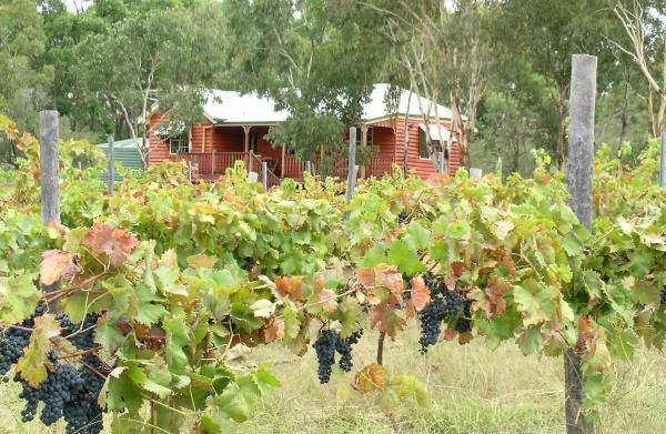 Hotelbilder: Fergies Hill Spa Cottage @ Granite Ridge Wines, Ballandean