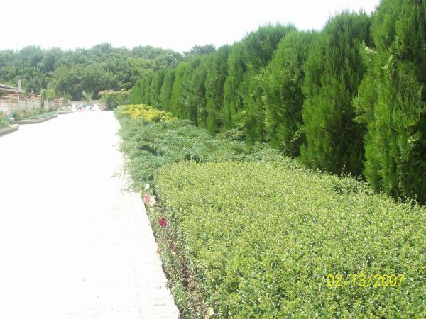 酒店图片: Eco Complex Dobri Dol, Dobri Dol