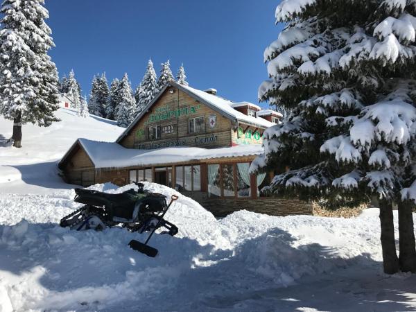 Hotellikuvia: Dobrila Hut, Sopot