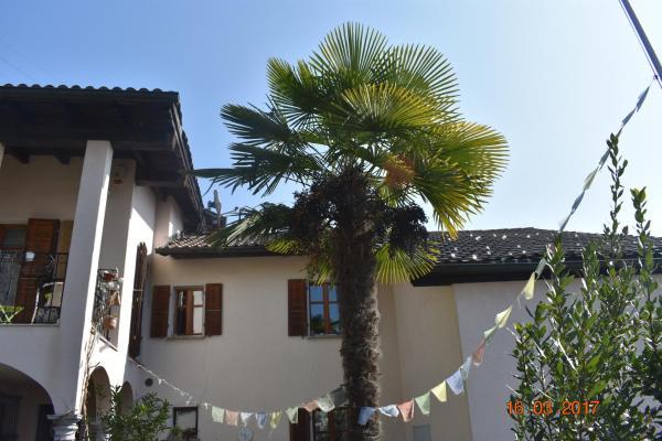 Hotel Pictures: Bali@Blu, Sessa