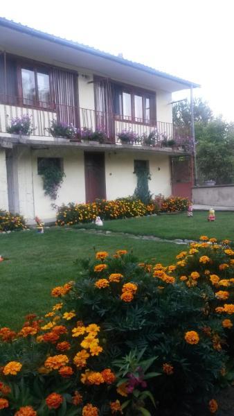 酒店图片: Elena Guest House, Banya