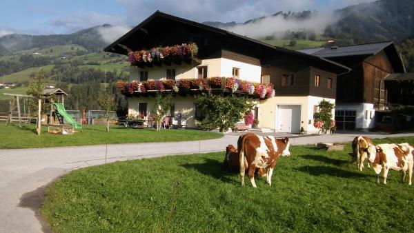 Hotelfoto's: Rieserhof/Fam. Meißnitzer, Taxenbach