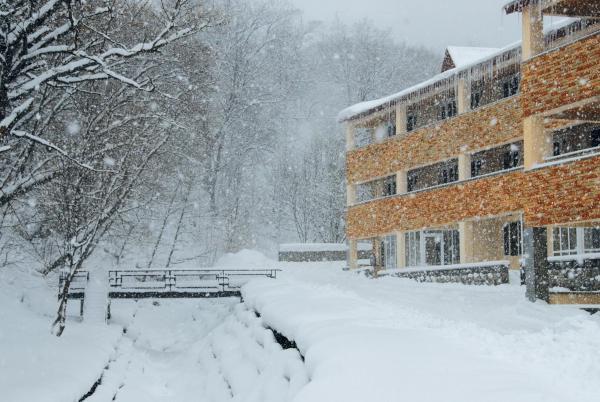 Zdjęcia hotelu: Tsaghkahovit Hotel, Tsaghkadzor