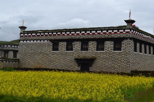 Hotel Pictures: Pogoda Destiny Inn, Daocheng