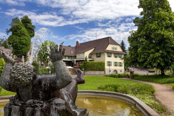 Hotel Pictures: Hotel Traube, Offenburg