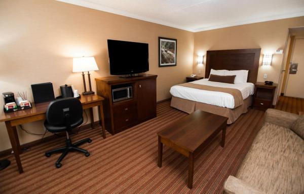 Hotel Pictures: Best Western Plus Dryden Hotel and Conference Centre, Dryden