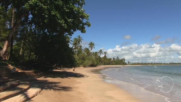 Hotel Pictures: Pousada Tassimirim, Ilha de Boipeba