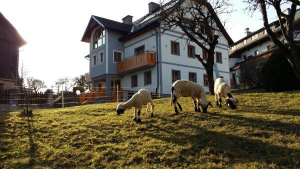 酒店图片: Ferienwohnung Menthof, Aich