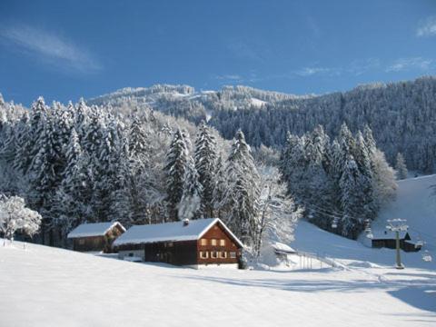 Foto Hotel: Hütte am Hirschberg, Bizau