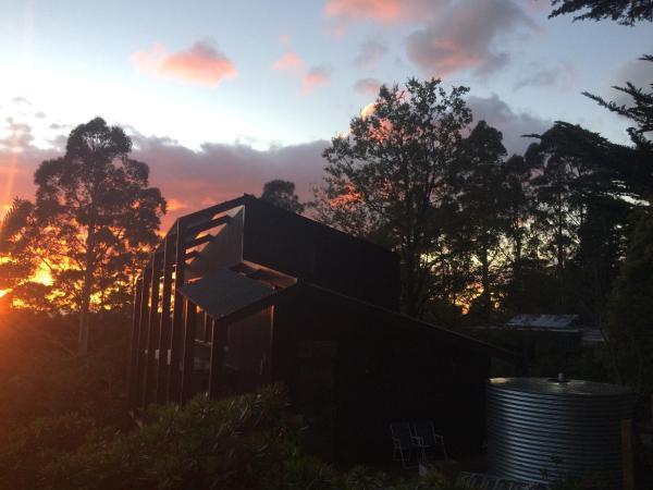 Hotellikuvia: Pipeline Chalet Mt Wellington, Ferntree