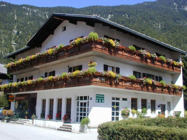 Fotografie hotelů: Haus Alpenrose, Obertraun