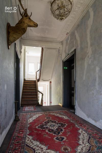 Hotelbilleder: B&B Château Boirs 'Sjetootje', Bassenge