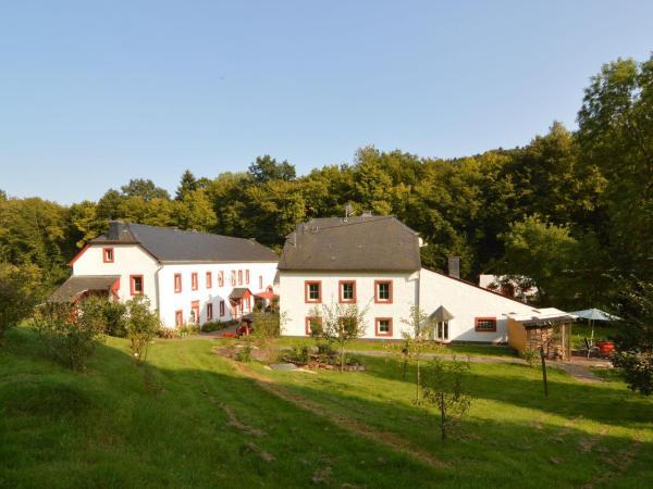 Hotel Pictures: Haus Mühle, Heidweiler
