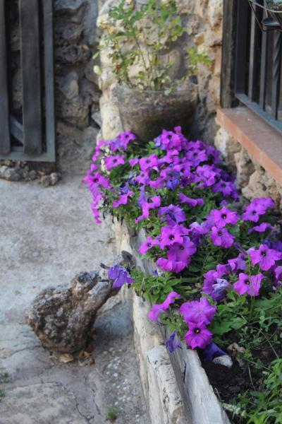 Hotel Pictures: Alojamientos Turisticos La Utrera, Las Majadas
