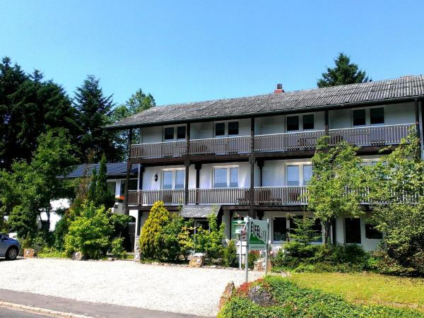 Hotel Pictures: Eifel Inn 4, Feuerscheid