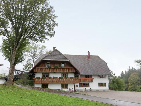 Hotel Pictures: Apartment Ladstadt 2, Furtwangen