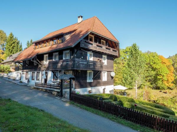 Hotel Pictures: Apartment Altes Forsthaus 2, Dachsberg im Schwarzwald