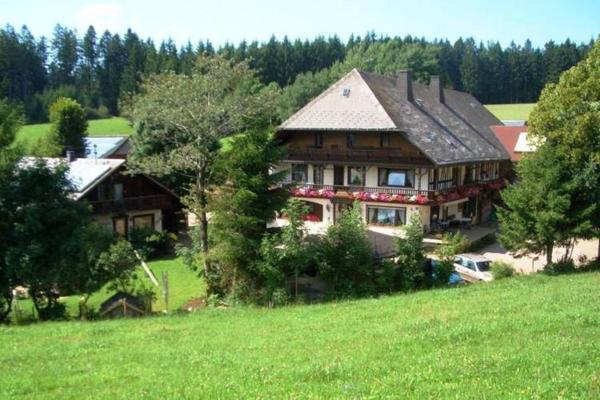 Hotel Pictures: Apartment Sonnenwinkel 3, Furtwangen