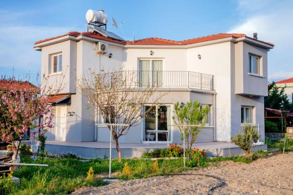 Hotel Pictures: Olive Tree Villa, Lapithos