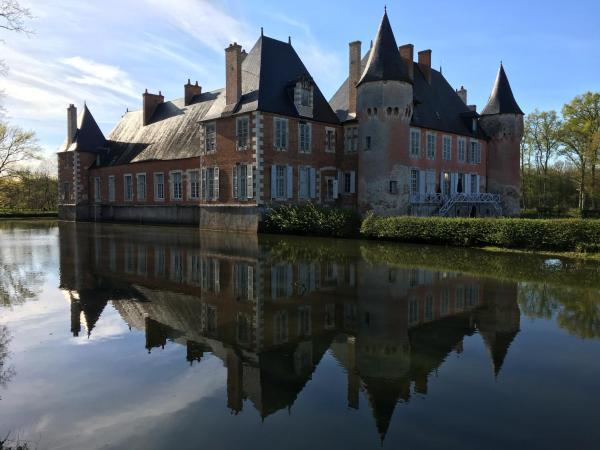 Hotel Pictures: Château de Souesmes, Souesmes